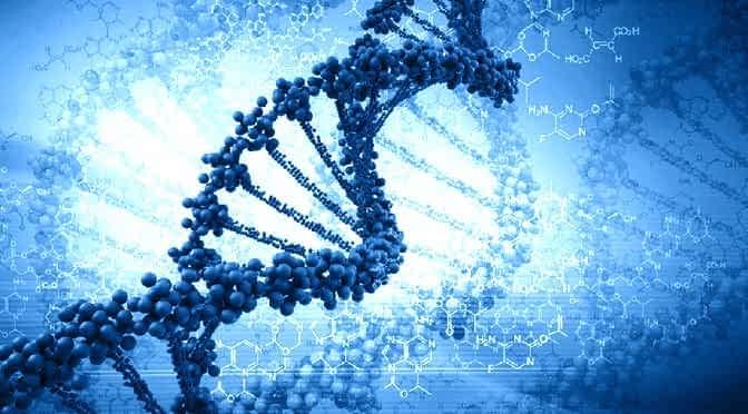 Wissenschaft räumt ein: Es gibt einen zweiten geheimen DNA-Code der Gene steuert