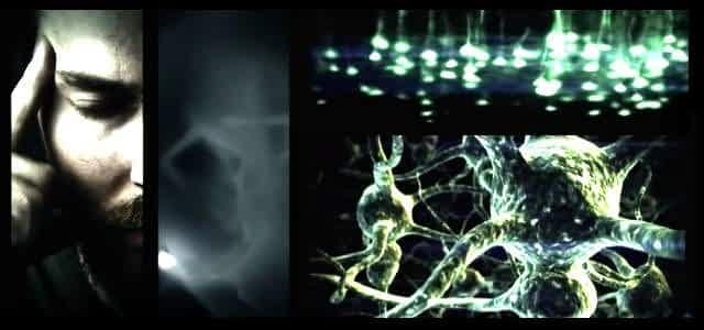 Unser Gehirn gleicht einem Quantenfeld