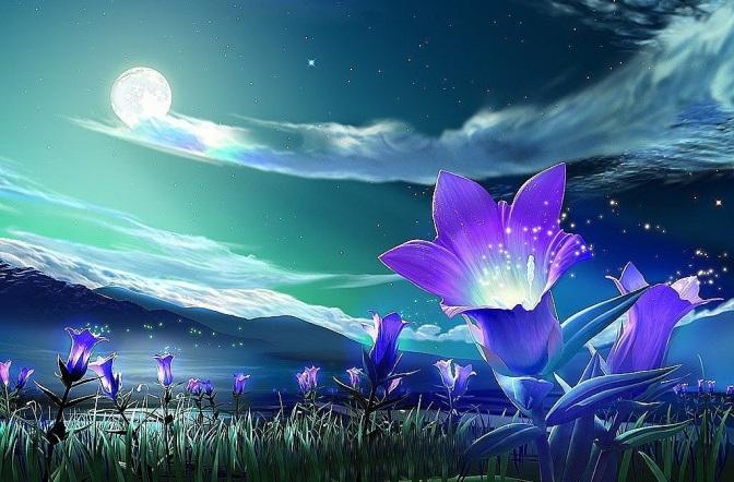 magic flowers wall