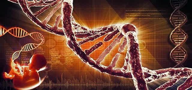 Markierungen in unserer DNA verbinden Allergien mit Geburtsjahreszeiten!