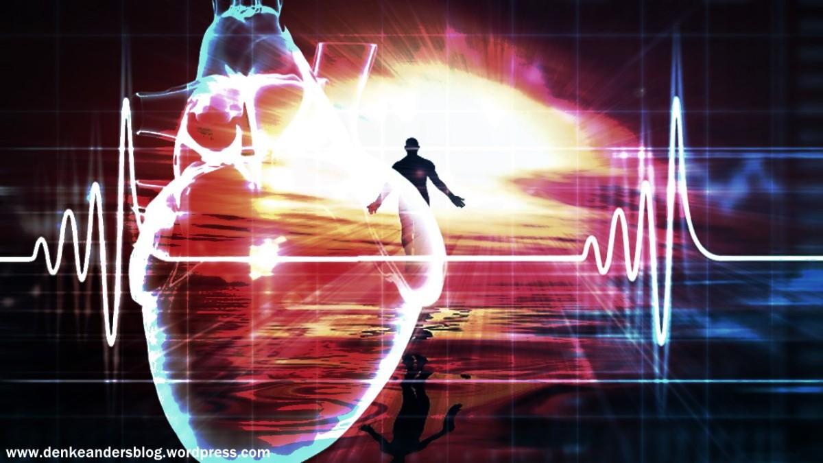 Die 5. Herzkammer und unsere höhere Natur!